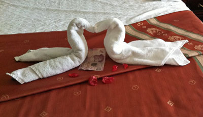 Cygnet Towels